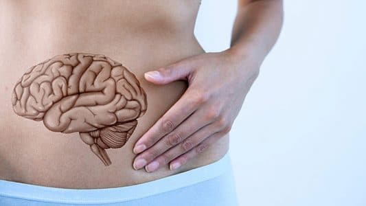 Gut brain closely connected